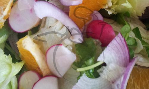 ensalada rabanitos cebolla morada naranja