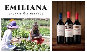 vino viña emiliana organico